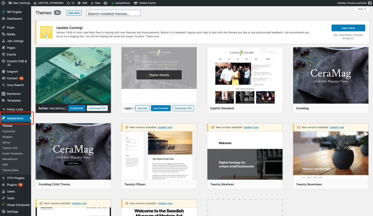 Wordpress theme install how to step by step branding personal